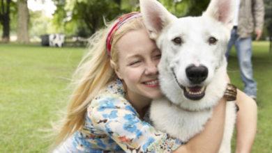 10 benefici di avere un cane