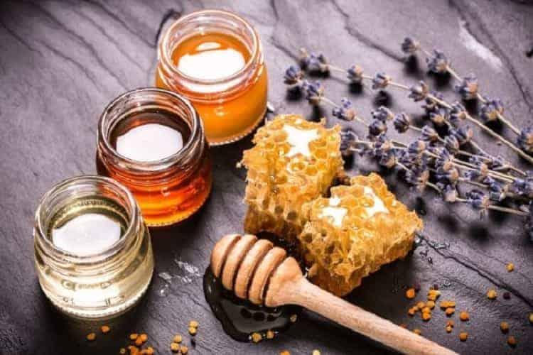I benefici del miele, un antibiotico naturale che cura mal di gola, raffreddore, tosse e non solo