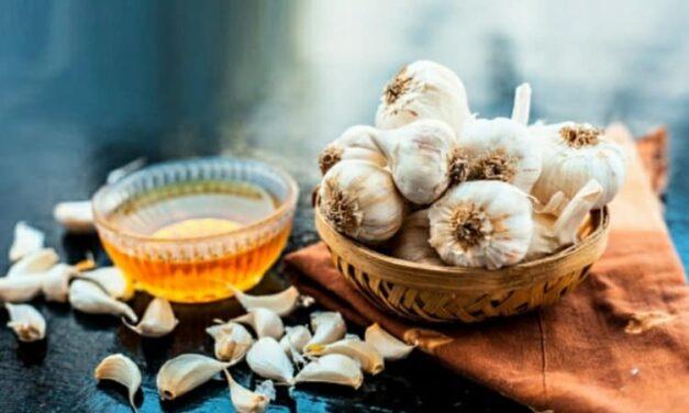 Aglio e miele a digiuno: la formula magica per stare bene!